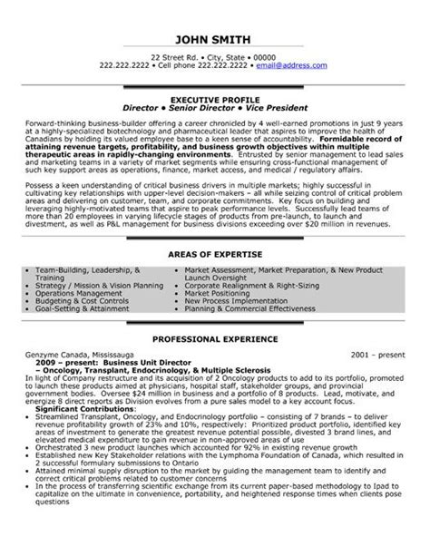 resume format for executive directors a professional resume template for a business unit