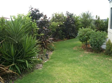 Gardening Australia Gardening In Australia Two Years On Getting