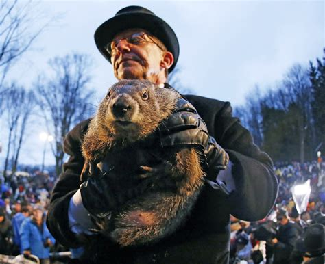 groundhog day que es d 237 a de la marmota phil en pensilvania 191 estar 225 cerca el