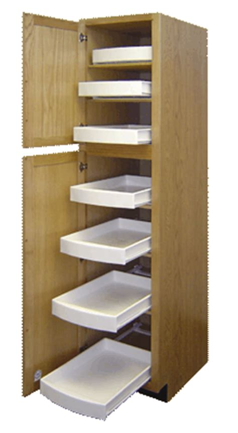 Roll Out Drawers For Kitchen Cabinets by 2 Facts About Pullout Kitchen Drawers That Will Make You
