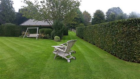 patio lawn and garden sussex garden care parkfield landscapes