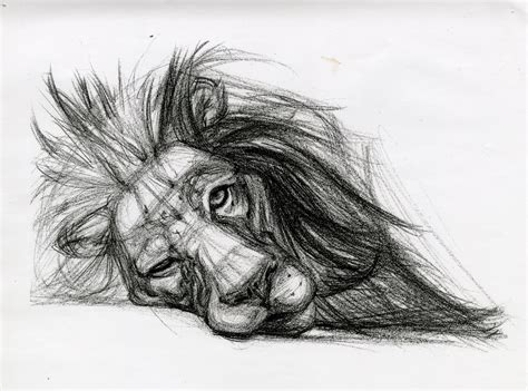 popular sketch artists best beautiful sketches best 25 beautiful sketches ideas