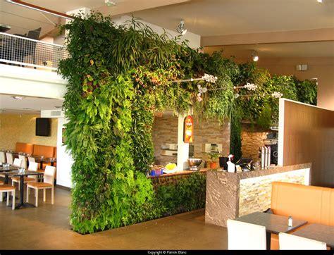 vertical garden in restaurant green walls vertical