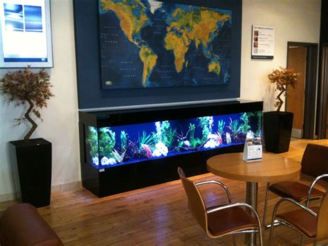 aquarium design yorkshire aquariums for businesses aqualease