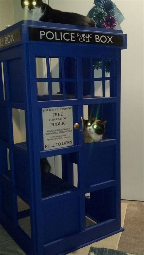 tardis couch 52 best images about cat trees etc on pinterest cat