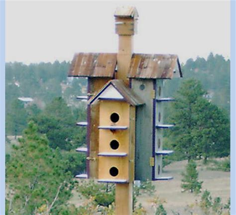 purple martin house purple martin bird house the bird man