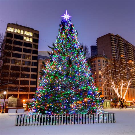 annual boston tree lighting happened last night live 105