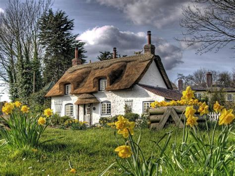 Cottage Up by