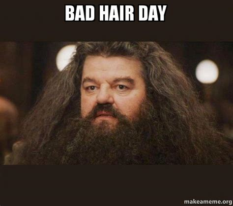 Bad Hair Day Meme - bad hair day hagrid i should not have said that make