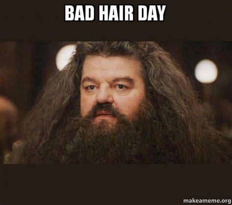 Bad Hair Day Meme - bad hair day hagrid i should not have said that make