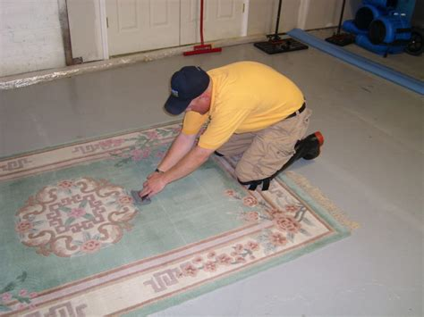rug cleaning st louis rug cleaning sams carpet cleaning in st louis and st charles mo