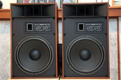 realistic mach one speakers i they re from radio shack but they are speakers