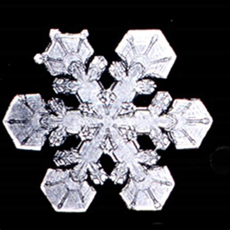 snowflake patterns real news northwoods press