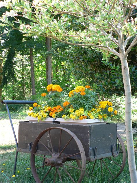 Garden Flower Cart Flower Cart 1 From Uploaded By User No Url Garden On Wheels Flower
