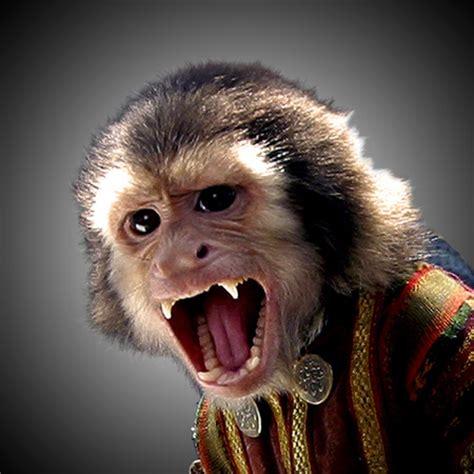 jack the monkey | disney wiki | fandom powered by wikia