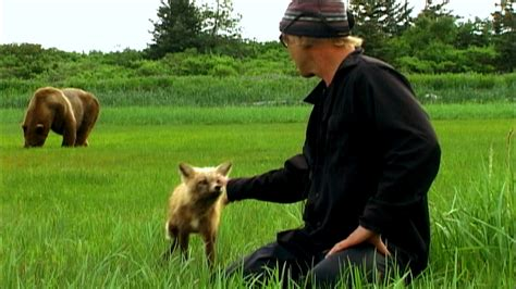 timothy treadwell bear attack timothy treadwell attack www imgkid com the image kid