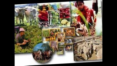imagenes recursos naturales de mexico recursos naturales de mexico youtube