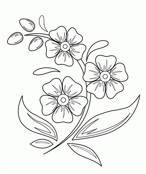 printable coloring pages of pretty flowers beautiful flowers drawings for kids great drawing