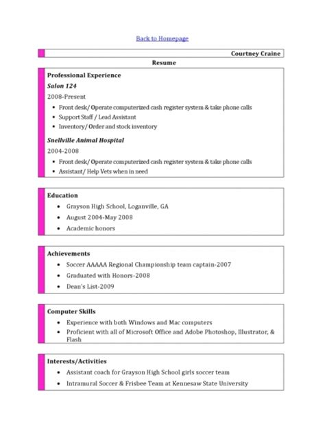 Computer Skills On Resume by Computer Skills Resume Exle Template