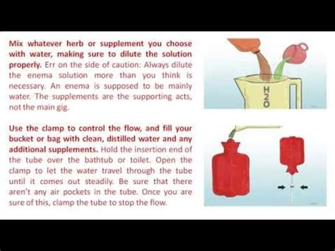what to give a yorkie for constipation how to at home water doovi