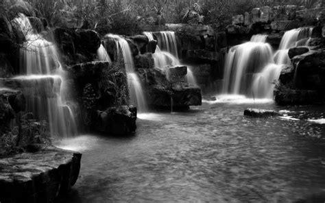 black and white jungle wallpaper hd beautiful jungle waterfalls wallpaper download free