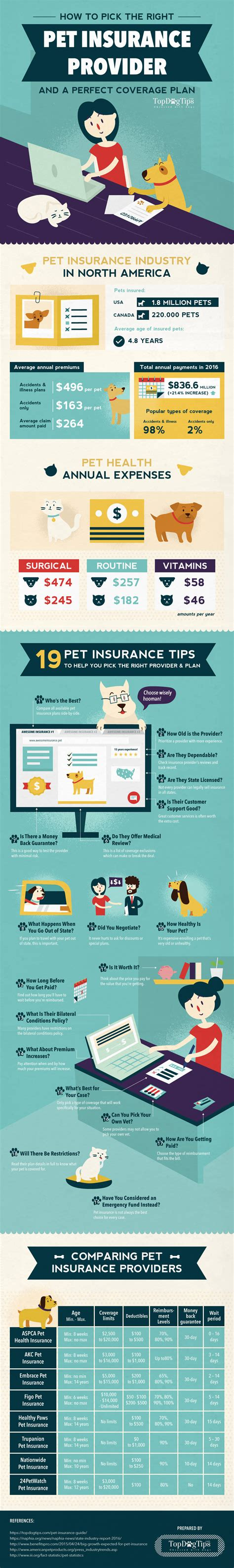 health insurance for dogs infographic 19 pet health insurance tips to the best provider plan
