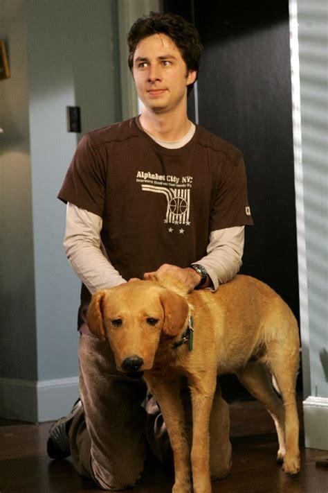 puppy scrubs rowdy scrubs wiki fandom powered by wikia
