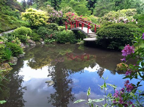 Kubota Gardens Seattle by Kubota Garden A Gem In South Seattle Seattle