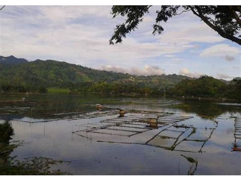 800 square in square meters 800 square meter lot in lake sebu general santos city