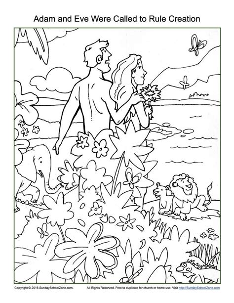 coloring pages for creation 69 best images about teaching creation story on