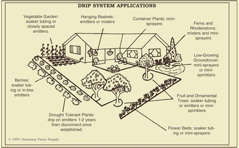design and layout of drip irrigation system drip irrigation design efficient use of a valuable resource