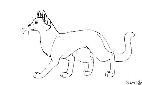 cat drawing template 17 best images about warrior cats on cats