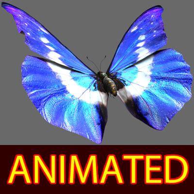 3d Morpho Blue Butterfly Wings Model Butterfly 3d Animation