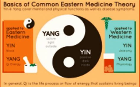 the of wellness bridging western and eastern medicine to transform your relationship with habits lifestyle and health books eastern vs western medicine rly report