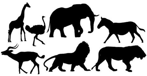 printable zoo animal silhouettes african animals clipart clipart best
