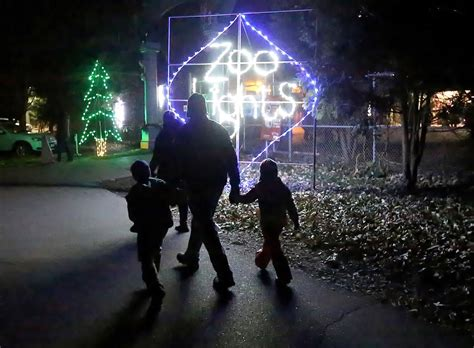 henry vilas zoo lights lights up for the season local