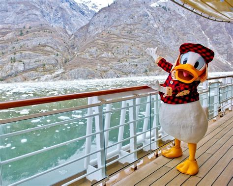 themes line donald duck 82 best images about disney cruise line on pinterest