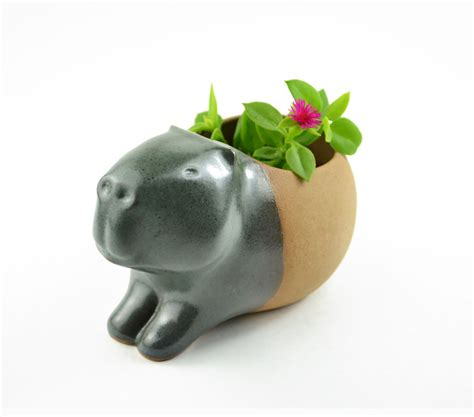 animal pots adorable little animal planters that will protect your