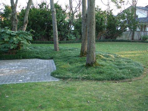 giardino privato giardino privato assoiride