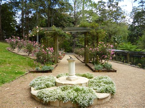 mt tamborine botanical gardens mount tamborine botanical gardens tamborine mountain