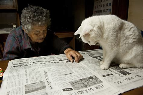 grandma  lonely   adopted  stray cat    inseparable  gotta