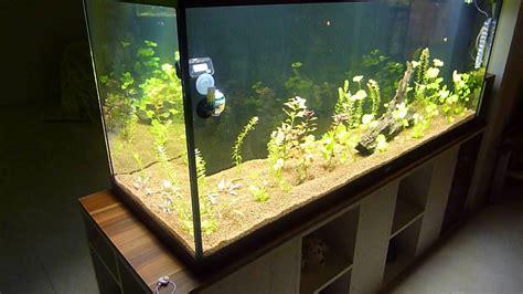 led beleuchtung juwel aquarium juwel 400 aquarium mit selbstgebauter led beleuchtung