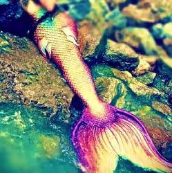 colorful mermaid tails that mermaid so colorful and sparkly mermaids