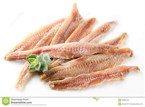 Anchovy Fillet In 700gr Anchovies 1 anchovy fillet with oregano on white stock photo image of herb herring 33662124
