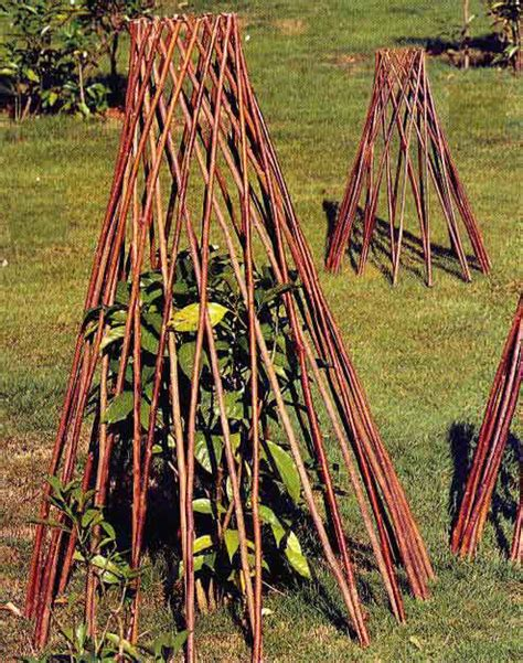 cone trellis willow teepee