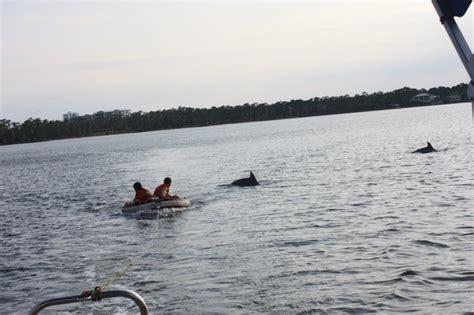 alabama boating laws boat rentals orange beach al