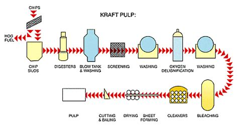 Kraft Paper Process - pulp and paper knowbc the leading source of bc