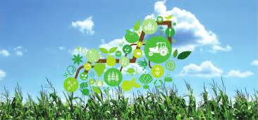 2013 advanced agricultural technology expo korea hosts first