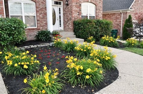 shrub design for front of house flower beds for front of house landscape and plants best garden trends