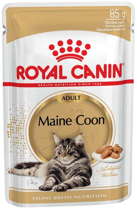 Jual Cat Food Croc Cat Mix Kaskus royal canin maine coon top royal canin ragdoll with royal